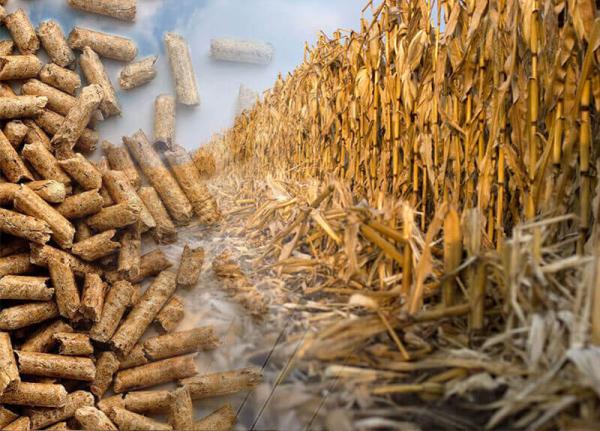 Corn-Stover-Pellet