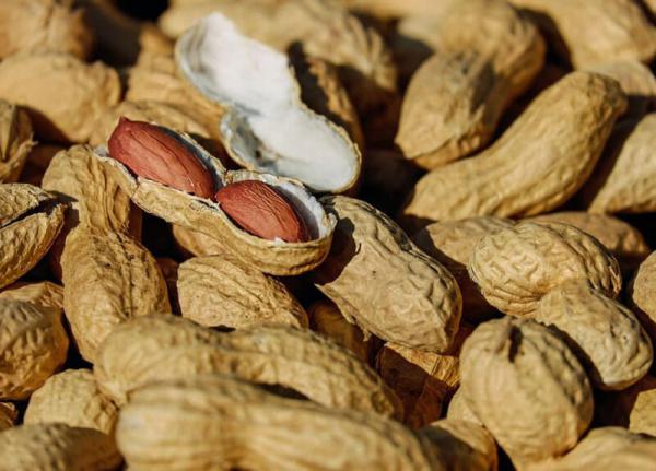 Peanut-shells