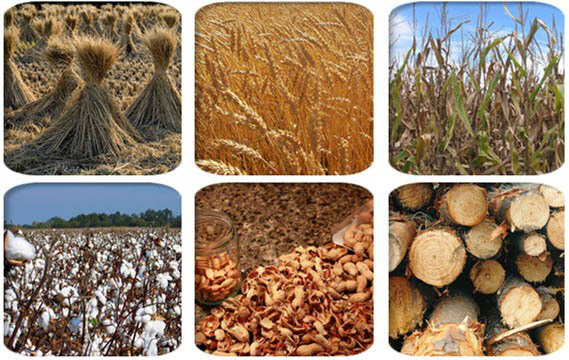 raw_materials_for_electric_pellet_mill